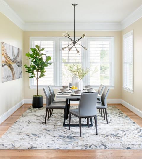 Transitional Breakfast Room with Fiddle Leaf Fig Tree